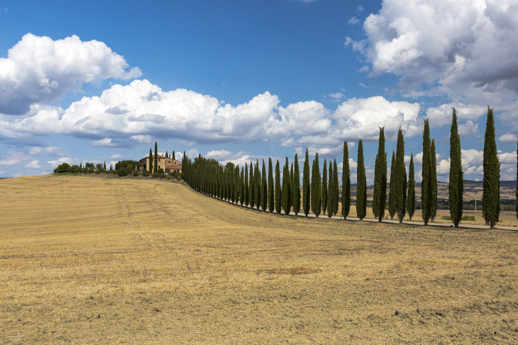 Scenic drive Tuscany