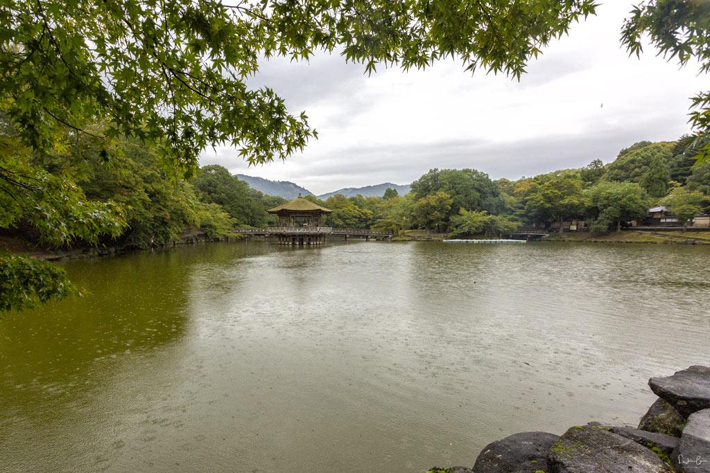 Nara Sagi Ike Pond