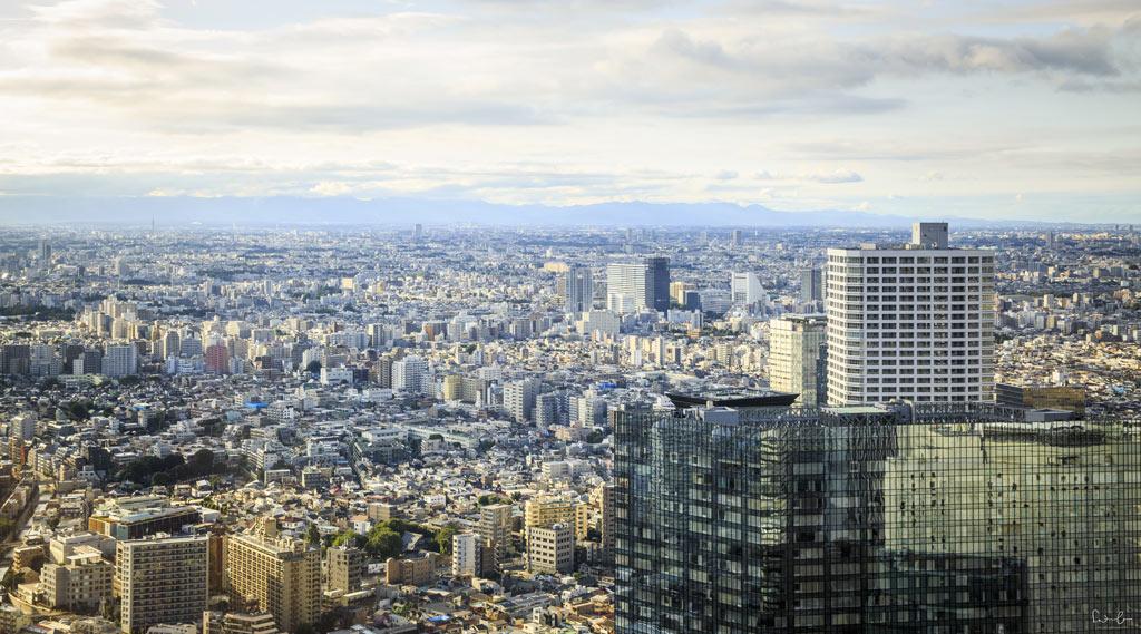 Tokyo Metropolitan Government building view