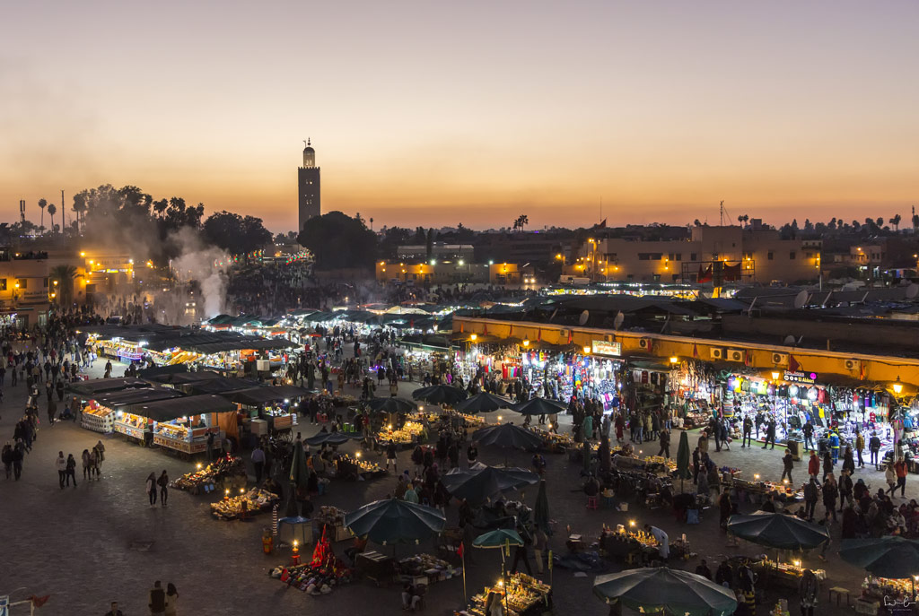 Djemaa el-Fna Marrakech animal tourism