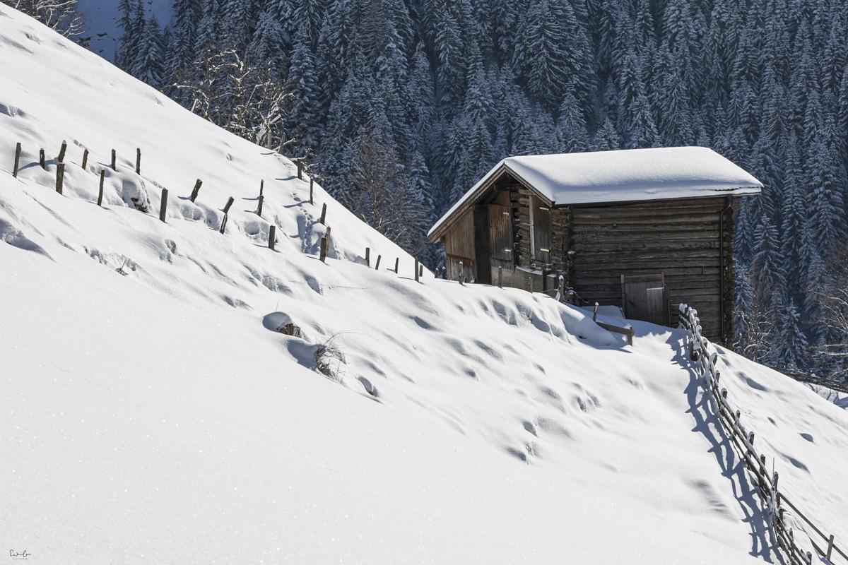 Snow holidays Alpbach