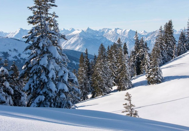 Die besten Tipps zum Fotografieren im Winter