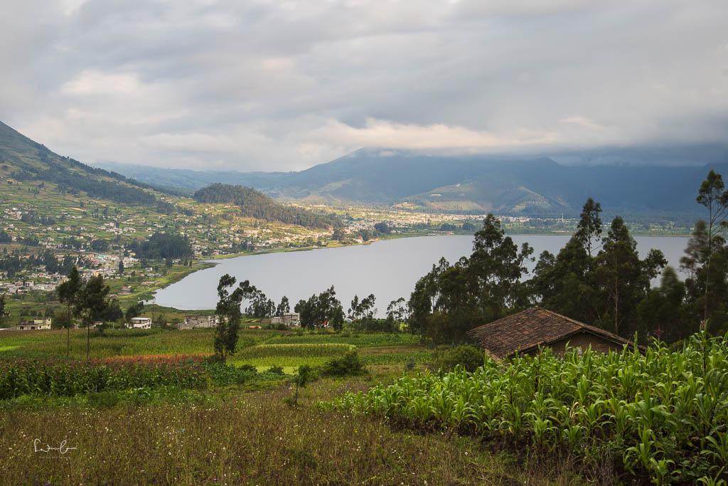 Otavalo el lechero view