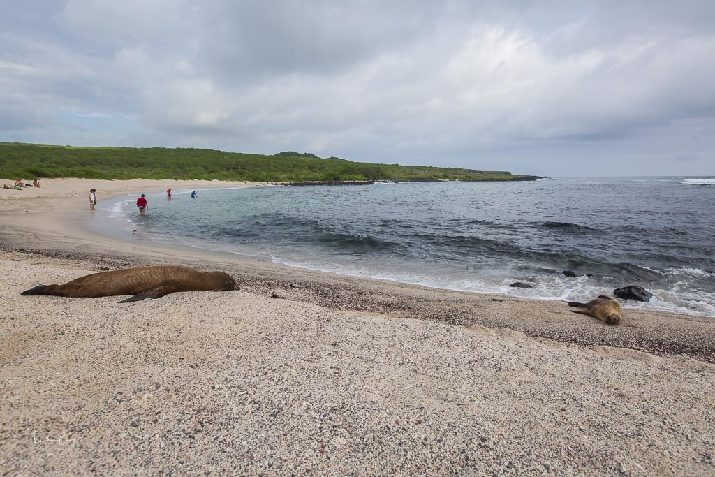 Galapagos Loberia beach-2