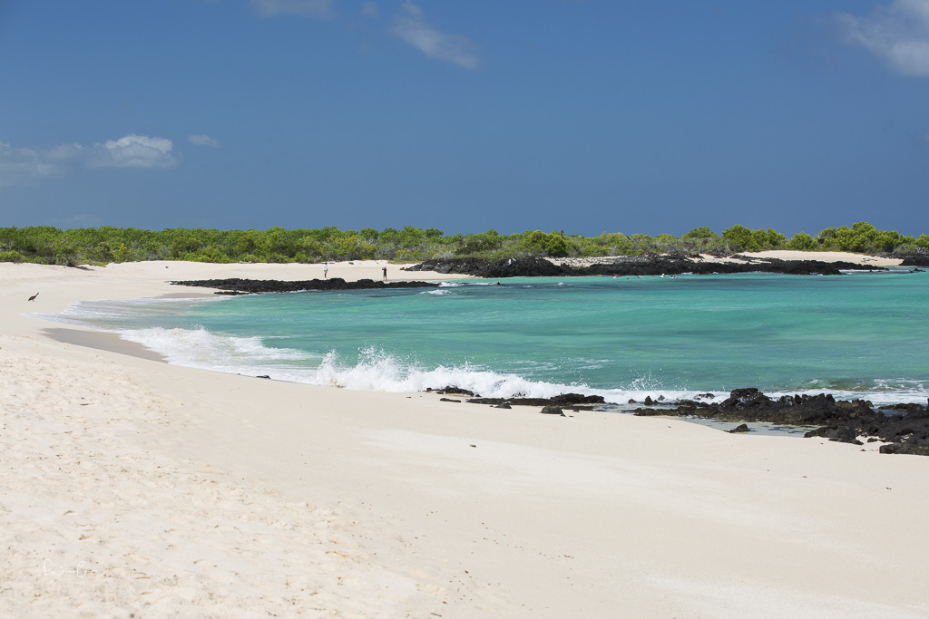 galapagos bachas beach-2